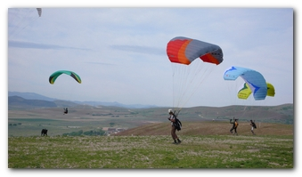 Several Paragliders